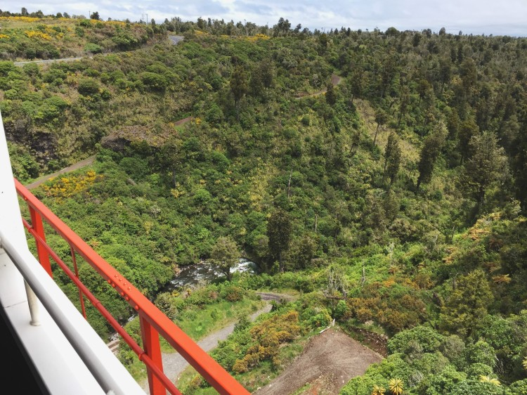 The best way to see New Zealand is by train! Take the Northern Explorer from Auckland to Wellington