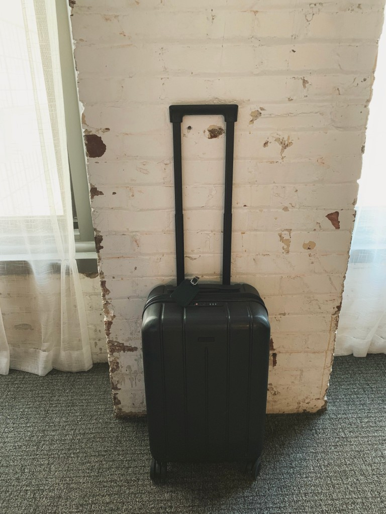 Chester Minima Carry-on Suitcase