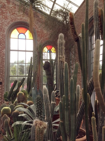 Missouri Botanical Garden: Visit the 79-acre botanic gardens in St. Louis, Missouri. As one of the oldest and most expansive gardens in the U.S., this top St. Louis attractions is a real gem! #stlouis #missouri #midwest #travel #gardens #botanicalgardens #plants