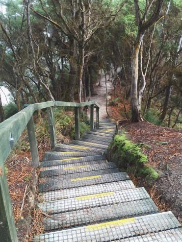 Wai-O-Tapu: New Zealand's Thermal Wonderland