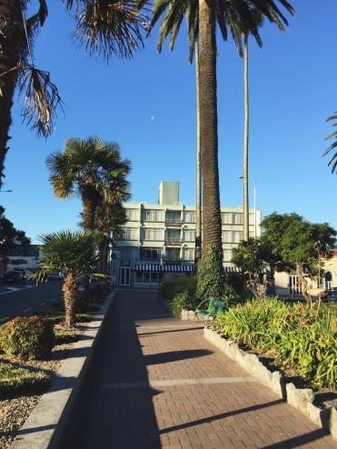 Napier: The Art Deco City