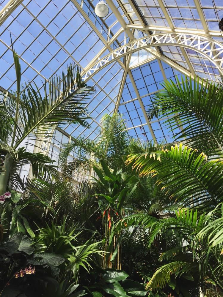 The Biltmore Estate - Biltmore Conservatory
