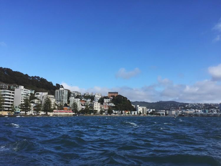 Exploring Wellington's Oriental Bay