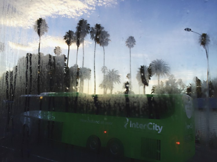 picture of bus through foggy window