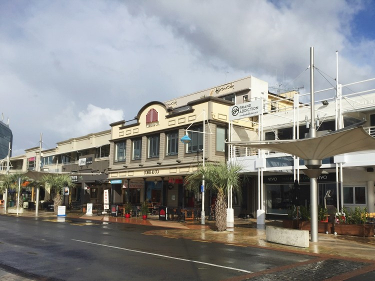New Zealand Hostel Guide: Harbourside City Backpackers