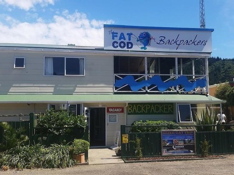 New Zealand Hostel Guide: Fat Cod Backpackers