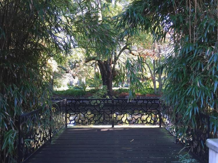 Queens Gardens // Nelson, NZ