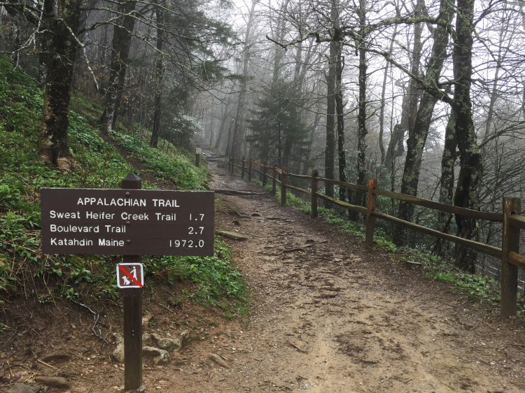 Great Smoky Mountains National Park Appalachian Trail