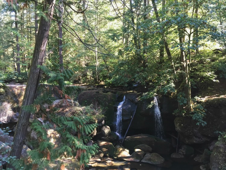 Bellingham, Washington // Travel Daze