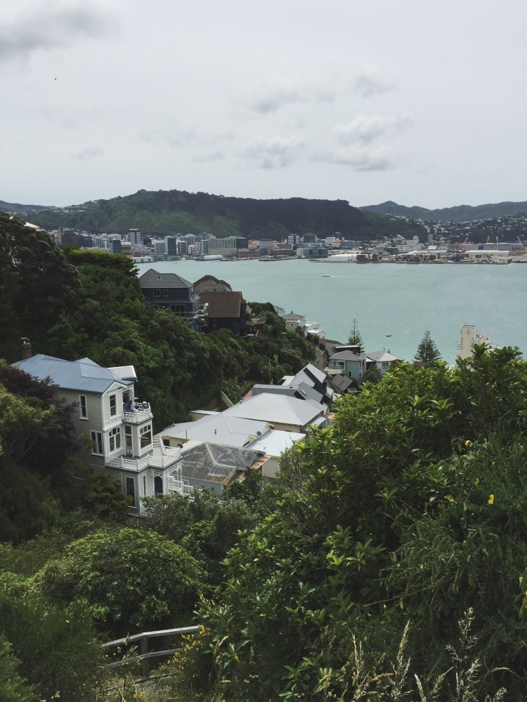 view over the city of Wellington, New Zealand
