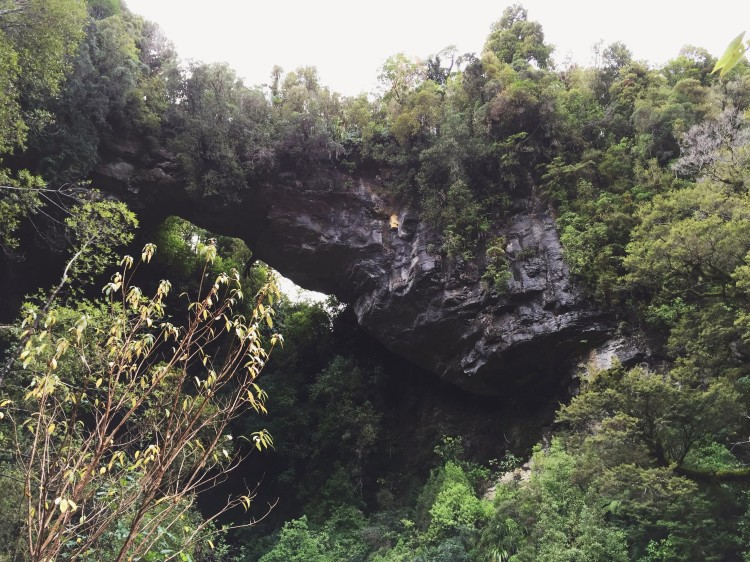 Limestone caves, arches & other features in New Zealand's Oparara Basin just north of Karamea