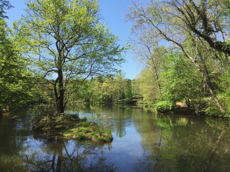 The Biltmore Estate - Bass Pond