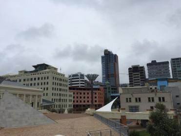 Wellington City Guide
