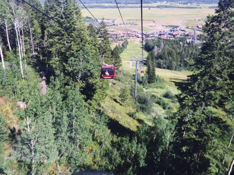 Take a ride on the Bridger Gondola in Teton Village. It takes visitors on a scenic ride up Rendezvous Mountain--for FREE