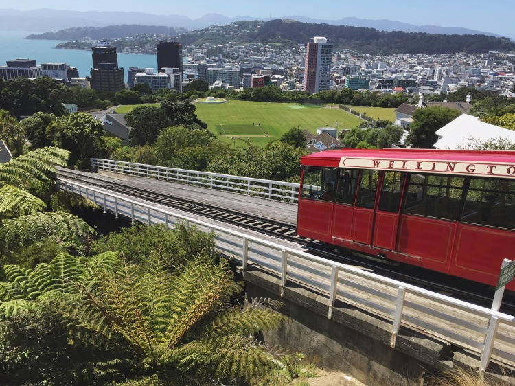 19 Free Things to Do in Wellington // Travel Daze