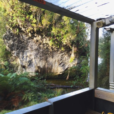 Charleston Caves Rainforest Train